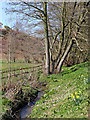 SO8398 : Nurton Brook east of Pattingham in Staffordshire by Roger  Kidd