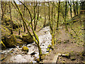 SD8019 : Dearden Brook from Plunge Mill by David Dixon