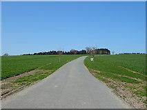 SO5793 : Road (footpath) to Larden Grange by JThomas