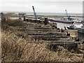 NZ4348 : Disused Railway, Seaham Harbour by David Robinson