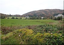 H9917 : Houses in the lee of Mullaghbane Mountain by Eric Jones