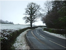 SO3216 : Old Ross Road by JThomas