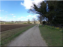 TM4899 : Footpath to Blocka Road by Adrian Cable