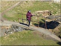 NT4999 : Footbridge to Elie Ness by Oliver Dixon