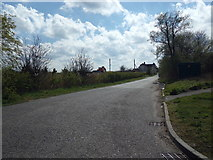 TM4599 : New Cut Bank Road, St. Olaves by Adrian Cable