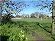 TM5294 : Oulton Playing Field by Adrian Cable