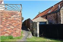 NO4102 : Path past The Net House, Lower Largo by Bill Kasman
