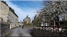 SO8700 : Chapel Lane, Minchinhampton by Vieve Forward