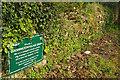 SX8958 : Goodrington Village Green by Derek Harper