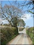 SX8289 : Road passing Honeyway Farm by David Smith