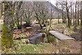 NN5726 : Wooden bridges by the Ogle Burn by Jim Barton
