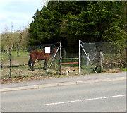 SO1110 : Merthyr Road stile, Princetown by Jaggery