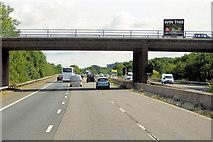 ST0104 : Bridge over the M5 near Westcott by David Dixon