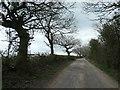 NZ1723 : Hummerbeck Lane, near Bolton Garths by Christine Johnstone