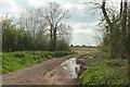 ST3729 : Track, War Moor by Derek Harper