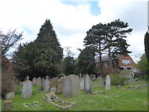 TQ1667 : St Nicholas, Thames Ditton: churchyard (b) by Basher Eyre