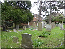 TQ1667 : St Nicholas, Thames Ditton: churchyard (c) by Basher Eyre