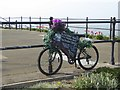 NZ6621 : Advertising bike on Marine Parade by Oliver Dixon