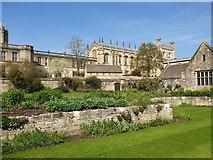 SP5105 : Garden at Christ Church, Oxford by Christine Matthews