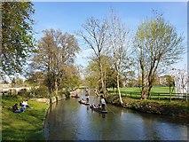 SP5105 : Punts on River near Christ Church, Oxford by Christine Matthews