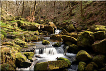 SK2579 : Burbage Brook in Padley Gorge, Derbyshire by Andrew Tryon