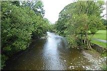 NY2623 : Downstream on the Greta by DS Pugh