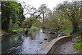 SP3677 : River Sowe immediately upstream from the railway viaduct, Willenhall, Coventry by Robin Stott
