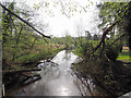 TL8094 : Looking South east along River Wissey from bridge by David Pashley
