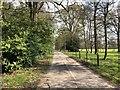 TQ0837 : Estate Road by Chris Thomas-Atkin