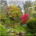 ST3087 : The cascade, Belle Vue Park, Newport by Robin Drayton