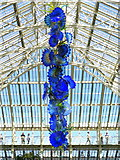 TQ1876 : 'Temperate House Persians' by Dale Chihuly (2019), Kew Gardens by Andrew Curtis