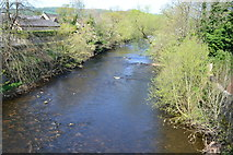 SK2572 : River Derwent at Baslow by David Martin