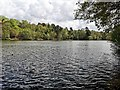 TQ2434 : Douster Pond in Buchan Country Park by PAUL FARMER