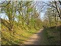 NZ3651 : Former railway path near Sunderland by Malc McDonald