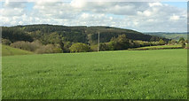 SX8281 : Towards the Beadon Brook valley by Derek Harper
