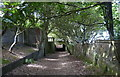 TM4761 : Suffolk Coast Path at Sizewell Hall by Mat Fascione