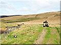 NT3343 : Farmer on quad bike near Glentress Water by Trevor Littlewood