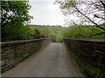 ST1599 : Across Angel Lane bridge, Gilfach by Jaggery