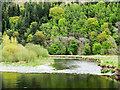 NT3336 : River Tweed flowing downstream at Innerleithen by Trevor Littlewood