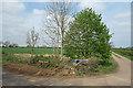 SP3629 : Spring Farm, Old Sign by Des Blenkinsopp