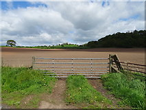 SJ4852 : Field entrance off the A41 by JThomas