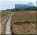 TM4765 : Suffolk Coast Path towards Sizewell by Mat Fascione