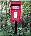 TQ7719 : Elizabeth II letter box, Hurst lane, Sedlescombe by Patrick Roper