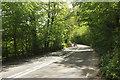 SS6219 : A377 in Gratleigh Wood by Derek Harper