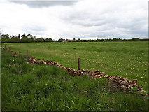 SP2504 : Field near Kencot by Vieve Forward