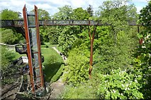 TQ1876 : Treetop Walkway stairs by DS Pugh