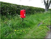 SJ5050 : Elizabeth II postbox, Ashtons-cross by JThomas