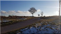 TM3795 : Wash Lane, Hales by Helen Steed