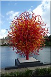 TQ1876 : Summer Sun by Dale Chihuly by DS Pugh
