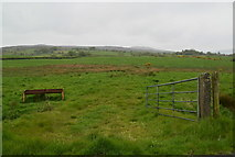 H4483 : An open field, Legnabraid by Kenneth  Allen